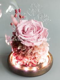 Single Pink Preserved Rose in Glass Dome