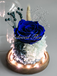 Single Blue Preserved Rose in Glass Dome